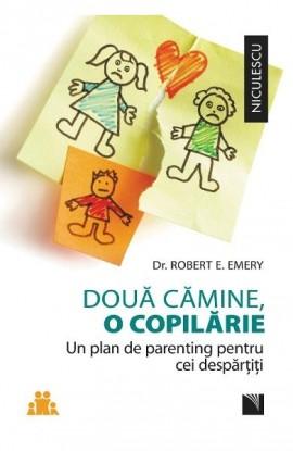 Doua camine, o copilarie Un plan de parenting pentru cei despartiti.